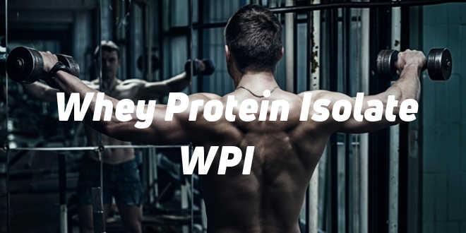 Whey Protein Isolate et ses propriétés