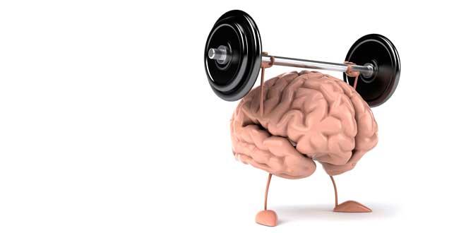 apoyo-salud-cerebral