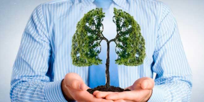 Pulmones sin tabaco