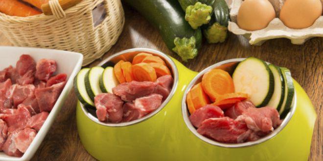 Dieta Cruda de Carne