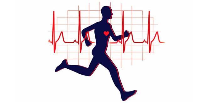 7 Beneficios Cardiovasculares del Ejercicio Físico que No Conocías