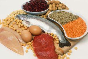 Fuentes de aminoácidos