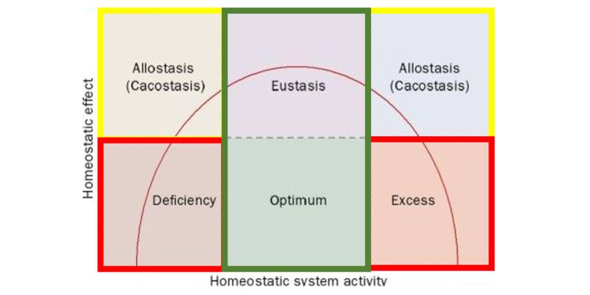 Gráfica Sistema Homeostatico
