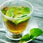 Metabolismo relación té