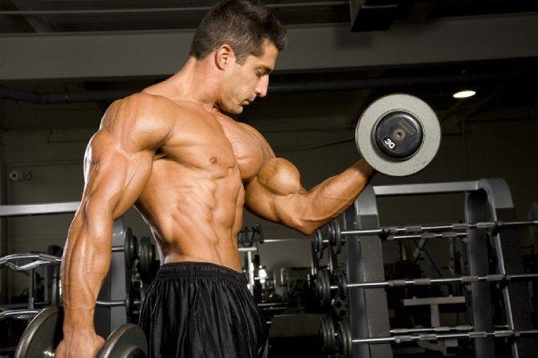 formas desarrollar masa muscular