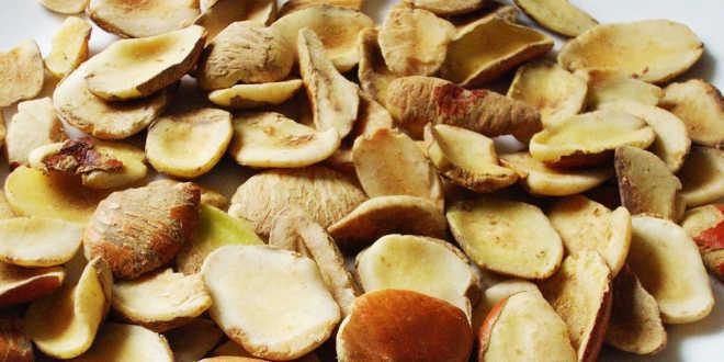 propiedades de la semilla de mango verde