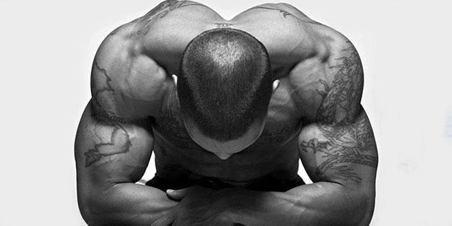 Testofen, aumenta tu testosterona