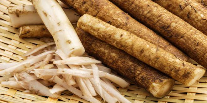 Bardana - Propiedades de su raíz y beneficios para la piel