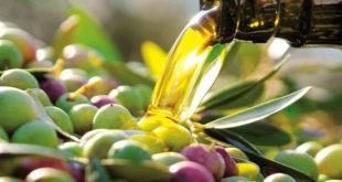 Aceite de oliva y deporte