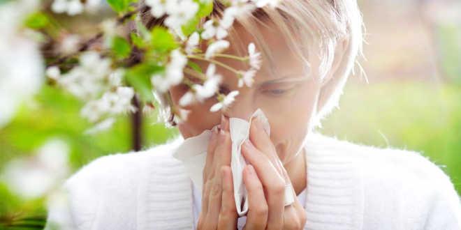 Reducir los síntomas de la alergia