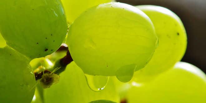 Uvas alimento depurativo