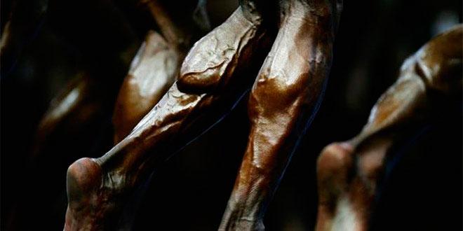 Hipertrofia: entrena cada músculo según su tipo de fibras