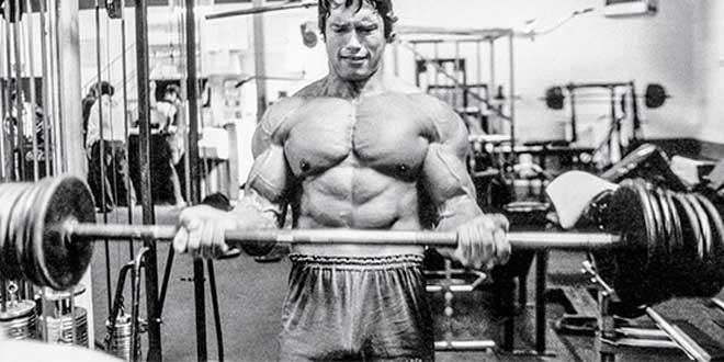rom-biceps