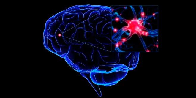 Ejercicio Activacion neuronal