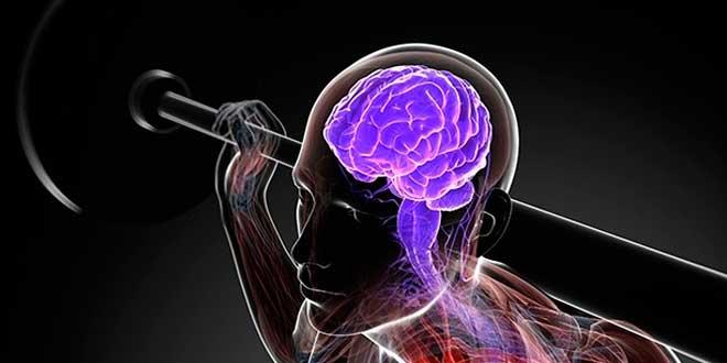 Actividad Física y Memoria
