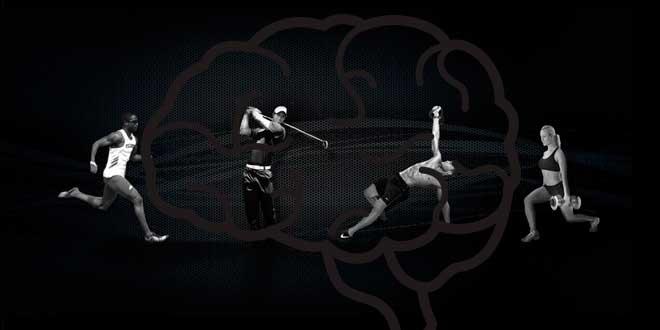 Beneficios del Ejercicio Físico en el Cerebro