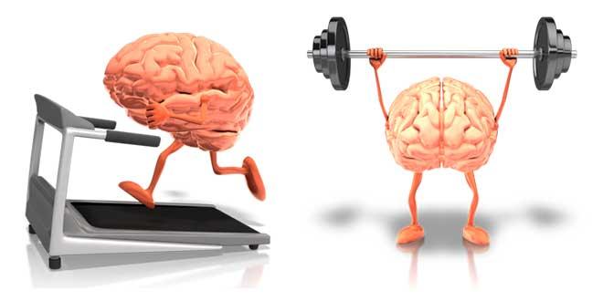Ejercicio Neuroprotector