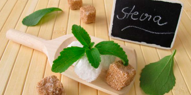 What is Stevia?