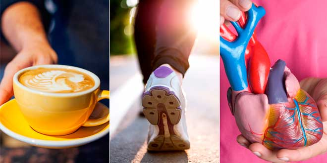 Cafeina y Rendimiento deportivo
