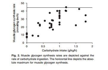 ingesta-carbohidratos-y-sintesis-glucogeno