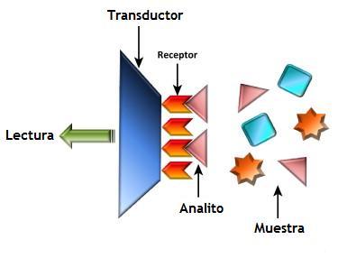 funcionamiento-sensor