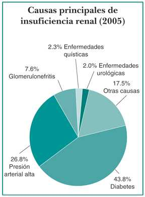 causas-insuficiencia-renal