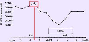 pico-maximo-temperatura