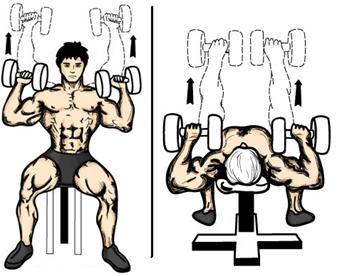 ejercicios cadena cinetica cerrada hombro