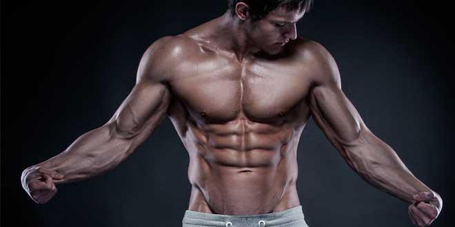 Protocolo HSN: Ganar Músculo Sin Apenas Grasa. Parte 3