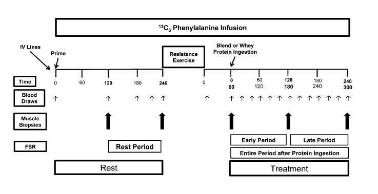 biopsia-muscular