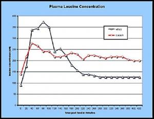 concentracion-de-leucina-en-plasma