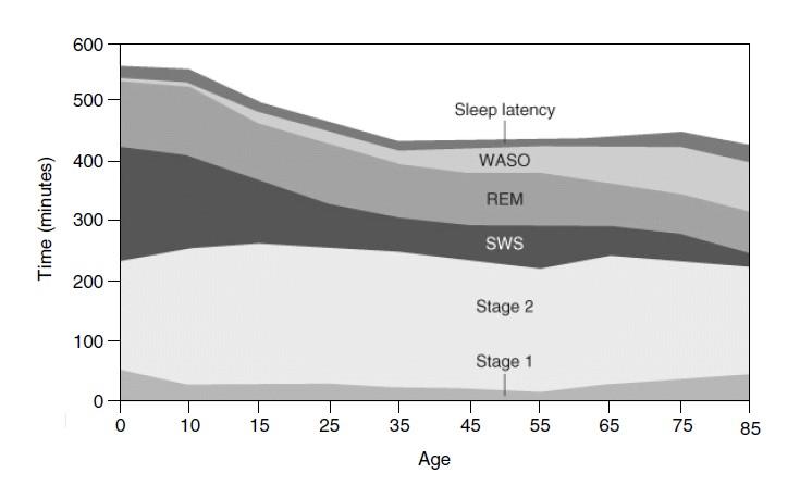 grafica-sueño-vs-edad