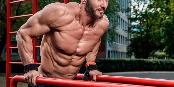 Miostatina y la masa muscular
