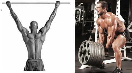 maxima-elongacion-muscular