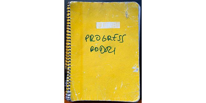 Diario de progreso