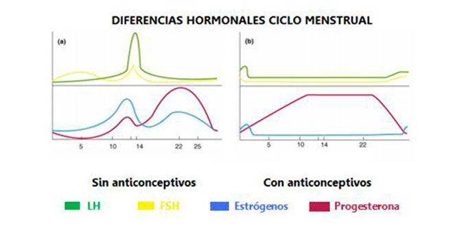 diferencias-hormonales