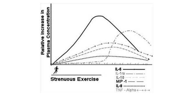 ejercicio-antiinflamacion