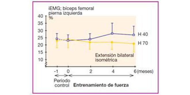grafica2