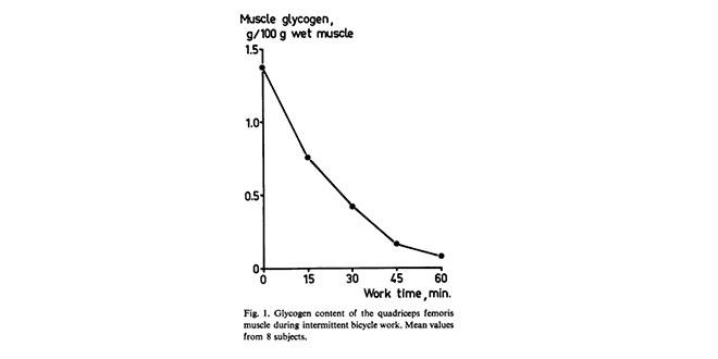 depleccion-glucogeno
