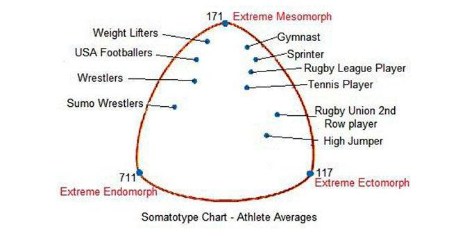 actividad-deportiva-y-somatotipo