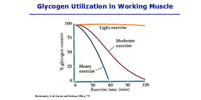 Energía procedente del sistema de fosfágenos