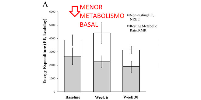 reduccion-metabolismo