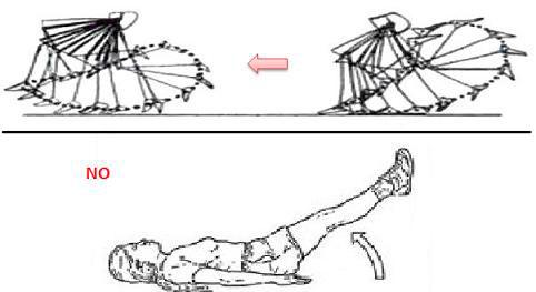 abdominales-inferiores
