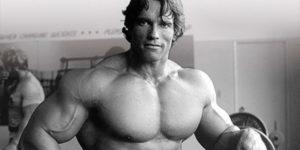 músculo y metabolismo