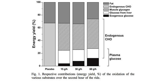 oxidacion-sustrato-energetico