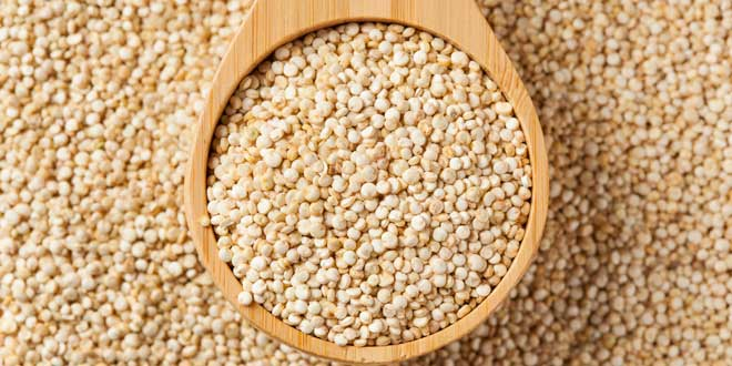 Quinoa - Proteina Vegetale