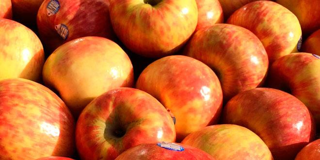 fruta-entre-comidas