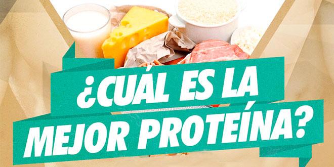 Alimentos com proteina pura