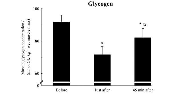 glucogeno-muscular