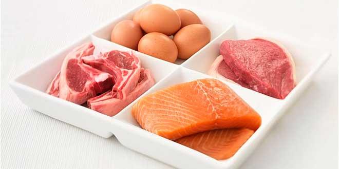 protein-alta